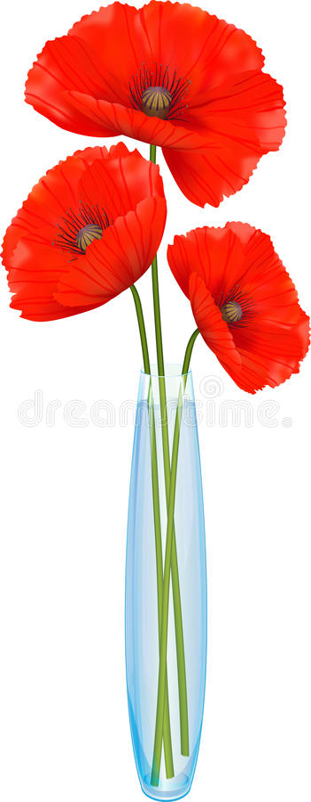 Rode papaversbloemen in een smalle glasvaas royalty-vrije illustratie