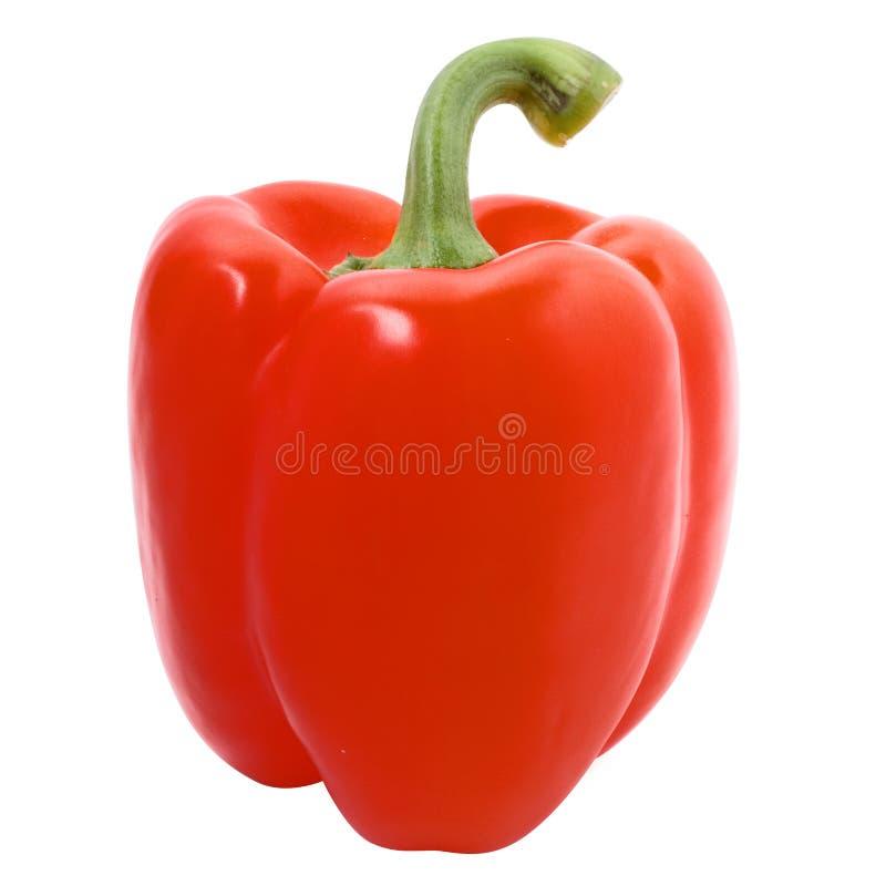 Rode paprica stock afbeelding