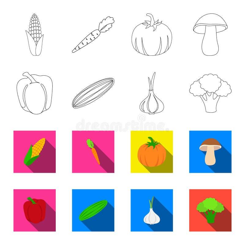Rode paprika, groene komkommer, knoflook, kool Groenten geplaatst inzamelingspictogrammen in overzicht, flet stijl vectorsymbool stock illustratie