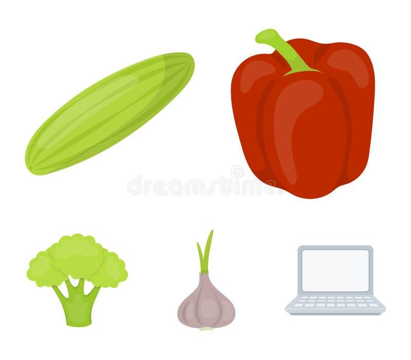 Rode paprika, groene komkommer, knoflook, kool Groenten geplaatst inzamelingspictogrammen in vector het symboolvoorraad van de be vector illustratie