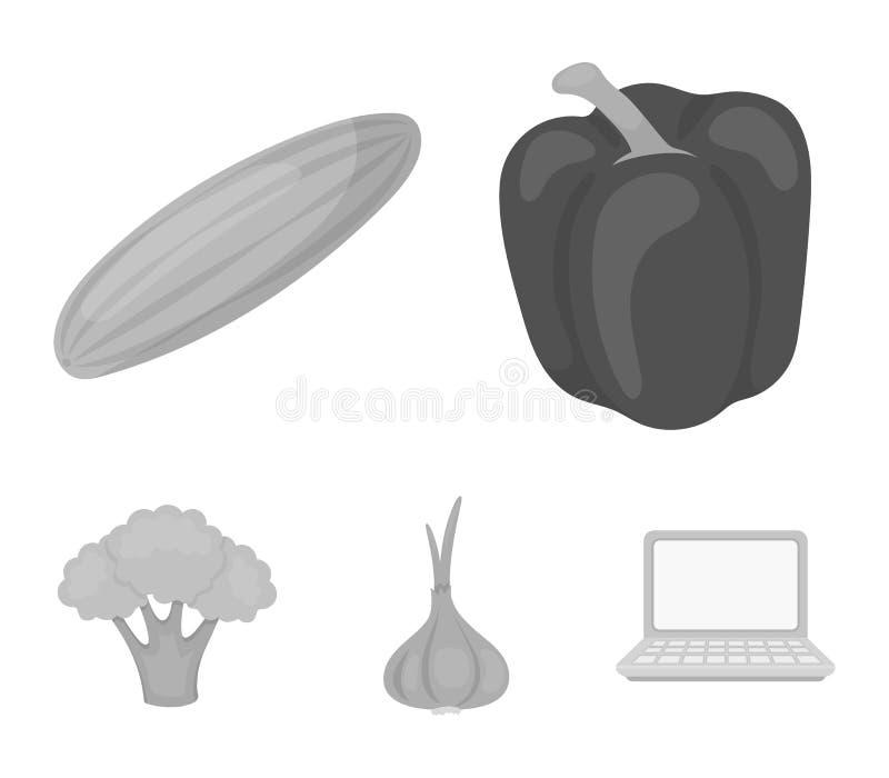 Rode paprika, groene komkommer, knoflook, kool Groenten geplaatst inzamelingspictogrammen in zwart-wit stijl vectorsymbool royalty-vrije illustratie