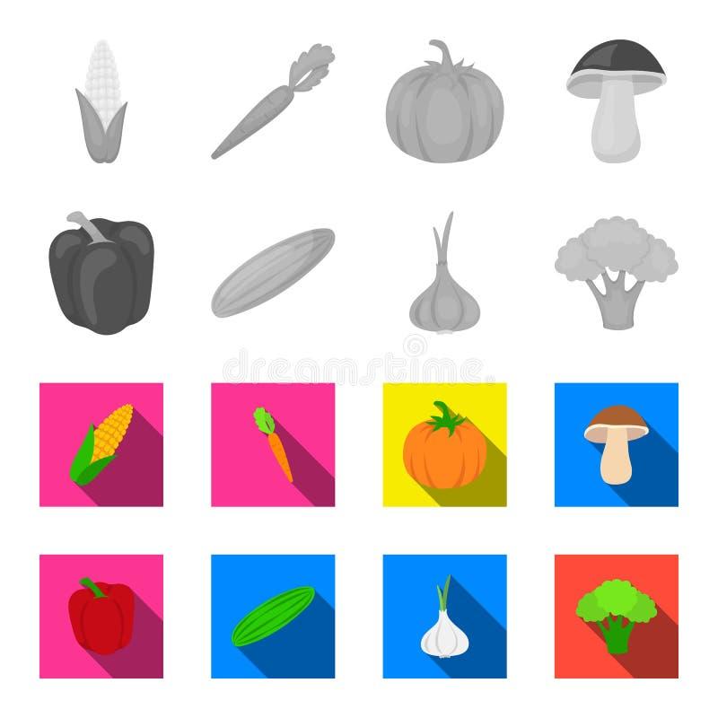 Rode paprika, groene komkommer, knoflook, kool Groenten geplaatst inzamelingspictogrammen in zwart-wit, vlakke stijlvector stock illustratie