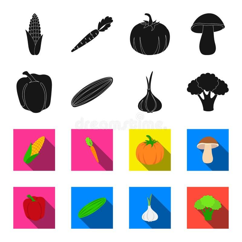 Rode paprika, groene komkommer, knoflook, kool Groenten geplaatst inzamelingspictogrammen in zwarte, flet stijl vectorsymbool royalty-vrije illustratie