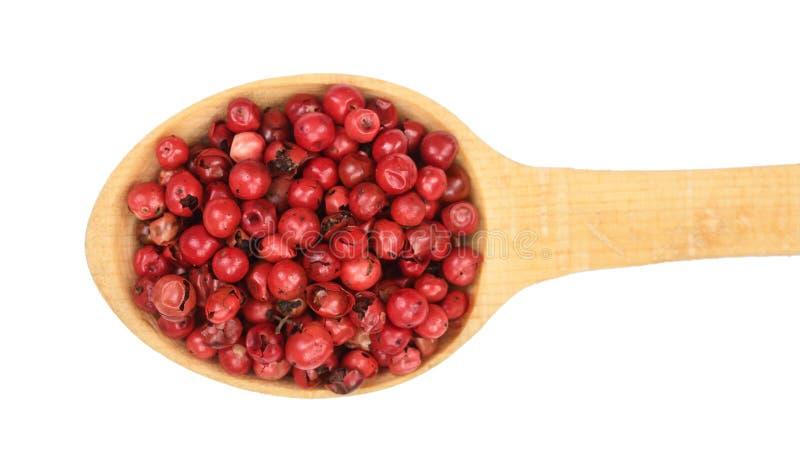 Rode peperbollenzaden in houten die lepel op witte achtergrond wordt geïsoleerd Hoogste mening Vlak leg stock foto
