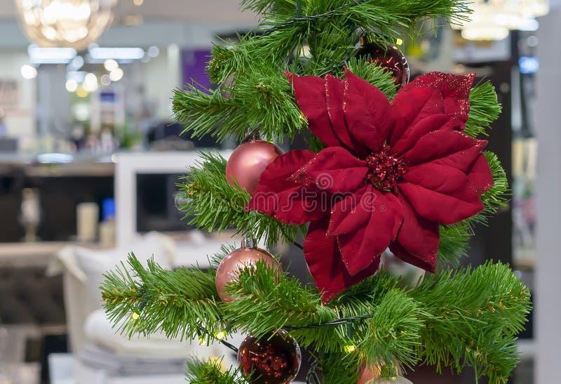 Rode Poinsettia Decoratie op de Kerstboom stock fotografie