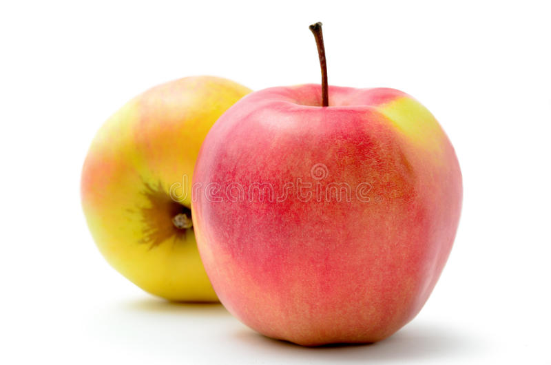Rode, rijpe appelen Jonagold op witte achtergrond royalty-vrije stock foto