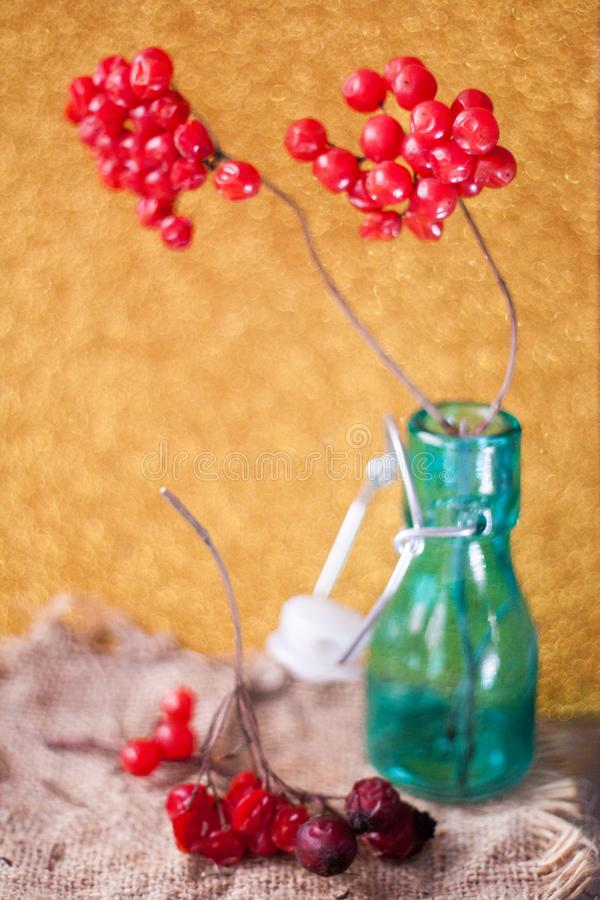 Rode rijpe bossen van viburnum het hangen op de kabel voor verkoop bij Oekraïense markt Omhoog sluiten de rode bessen van Viburnu royalty-vrije stock foto