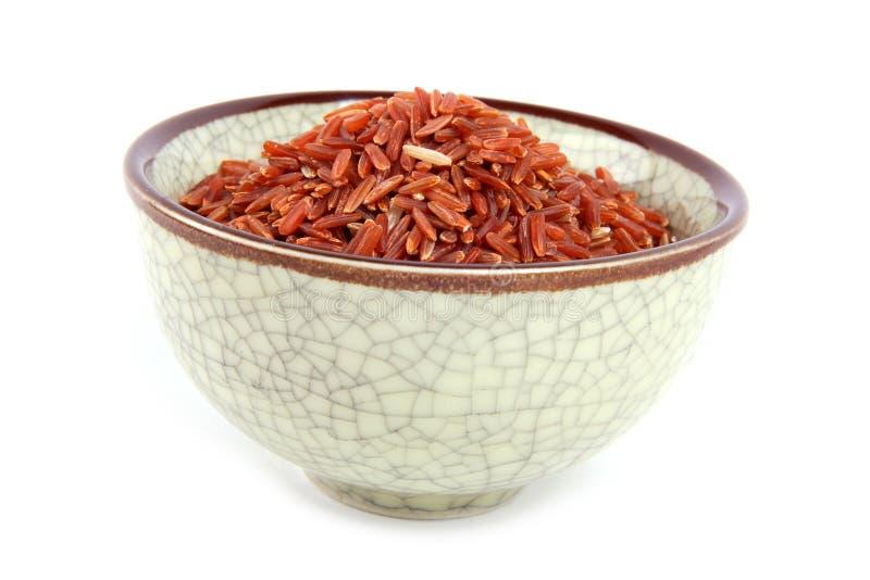 Rode rijst royalty-vrije stock fotografie