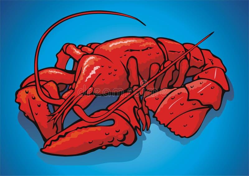 Rode rivierkreeften stock illustratie