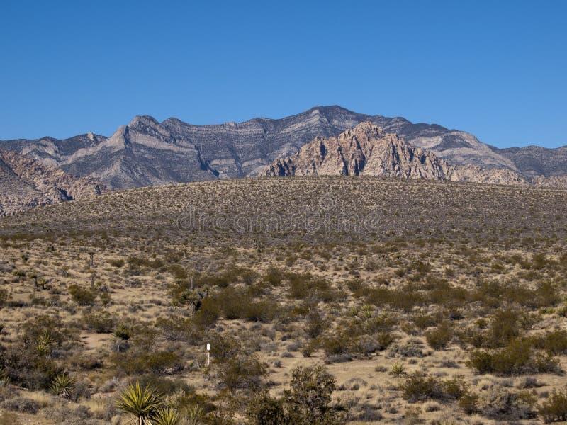 Rode Rotscanion dichtbij Las Vegas Nevada stock afbeelding
