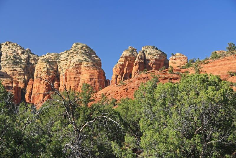 Rode Rotsvorming in Sedona Arizona royalty-vrije stock afbeelding