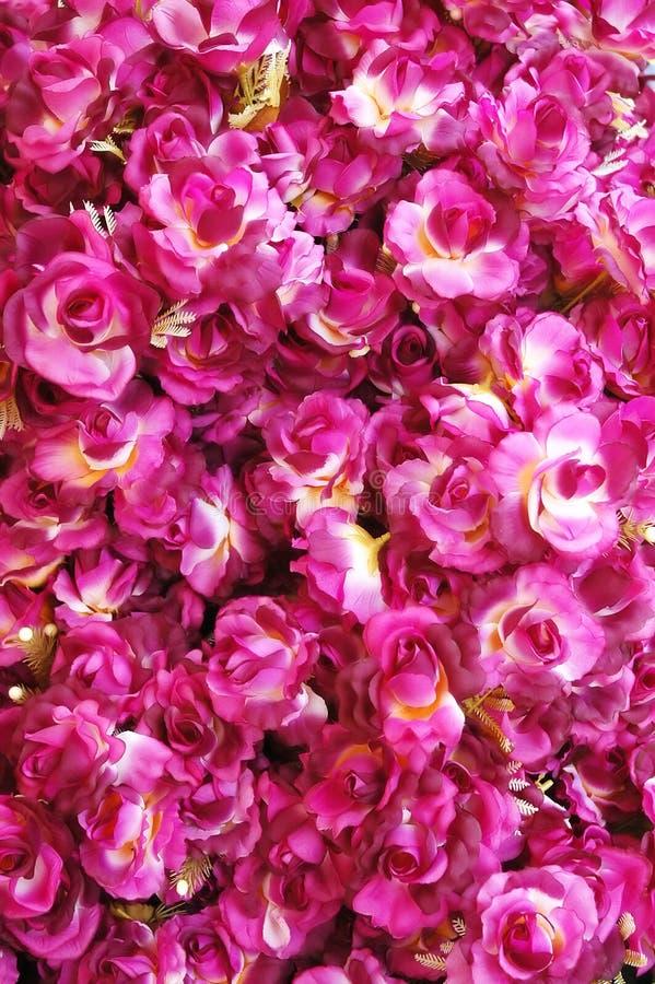Rode rozen royalty-vrije stock foto's