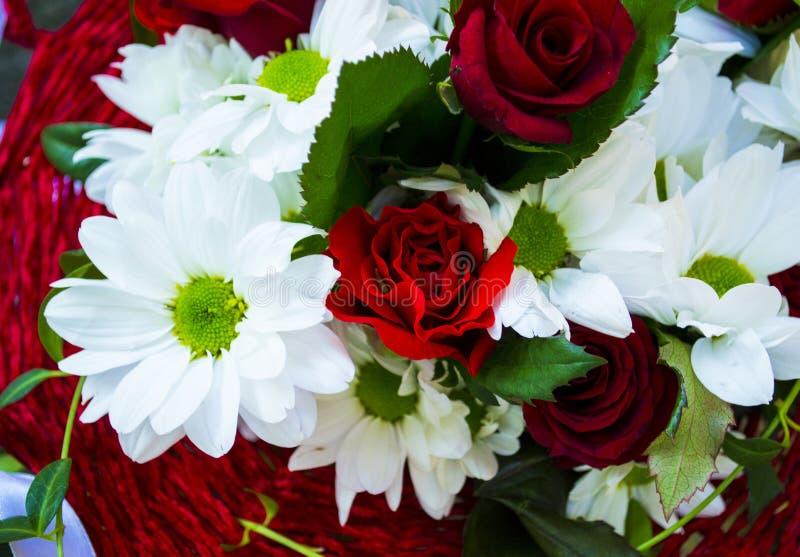 Rode rozen en witte chrysanten royalty-vrije stock fotografie