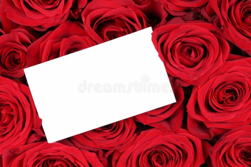 Rode rozen op Valentine of moedersdag met leeg teken en exemplaar stock foto
