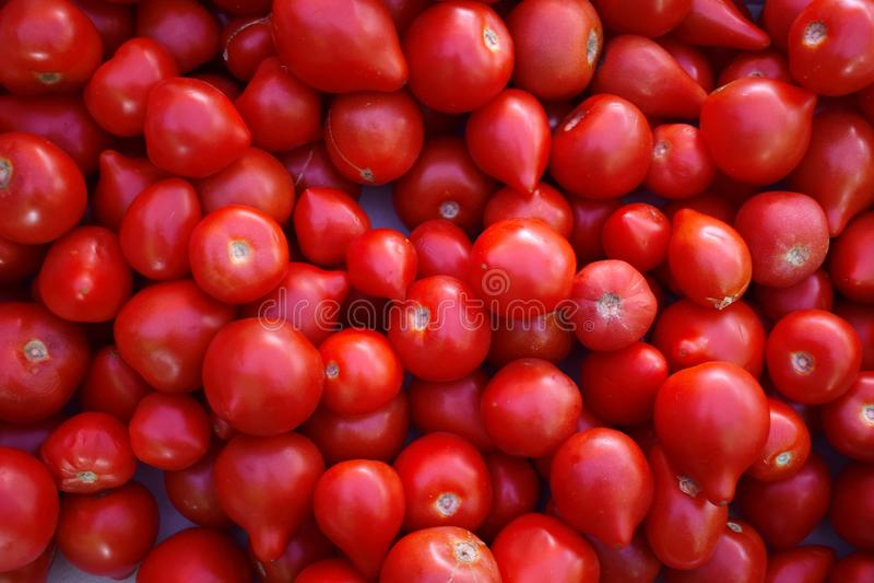 Rode sappige tomaten in markt Vele rode verse Tomaten stock afbeeldingen