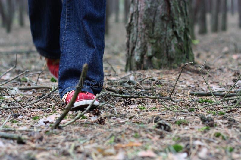 Rode schoenen stock foto