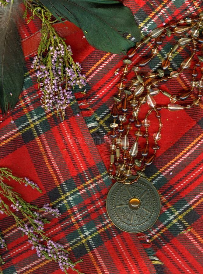 Rode Schotse plaid. royalty-vrije stock foto