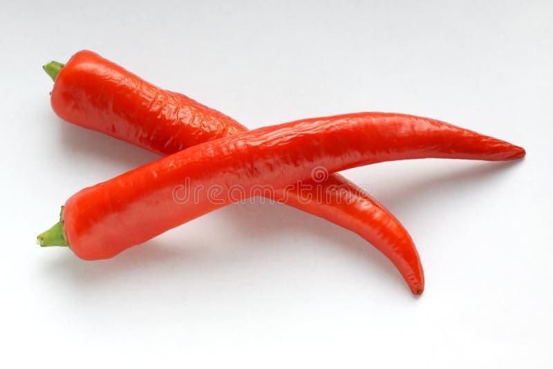 Rode Spaanse peper royalty-vrije stock foto's