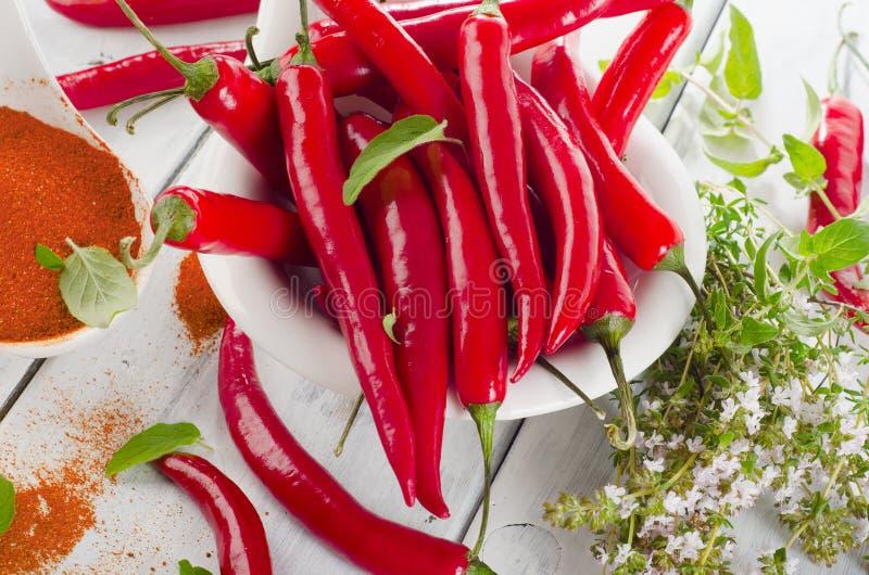 Rode Spaanse peperpeper met kruidenbladeren royalty-vrije stock foto's