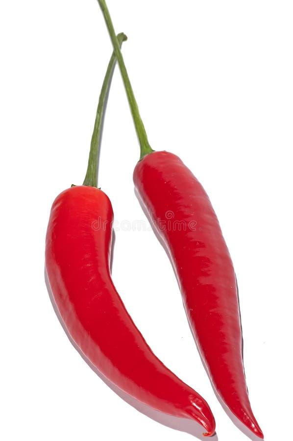 Rode Spaanse pepers royalty-vrije stock afbeelding
