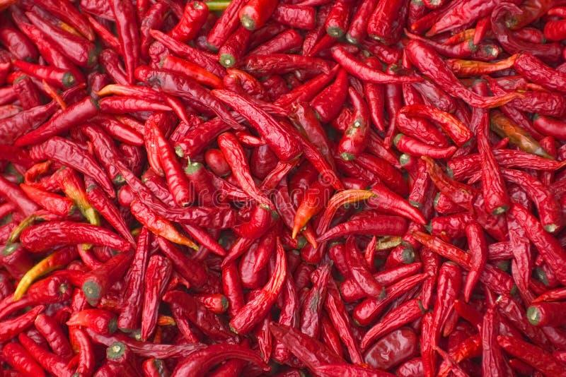Download Rode Spaanse pepers stock afbeelding. Afbeelding bestaande uit scherp - 37627