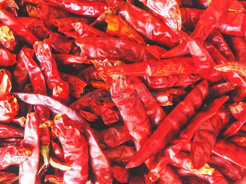 Rode Spaanse pepers, zeer heldere kleur royalty-vrije stock foto's