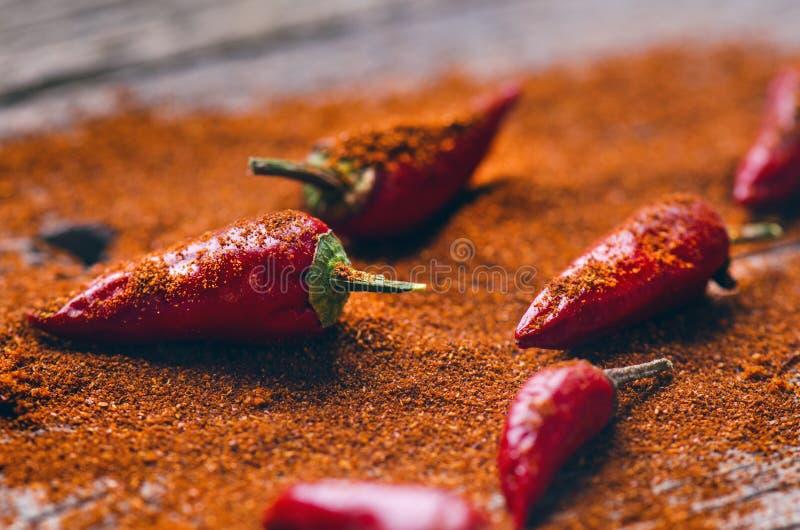 Rode Spaanse peperspeper, kruidig op een houten lepel Groente op een donkere, houten lijst Concept heet voedsel stock foto's
