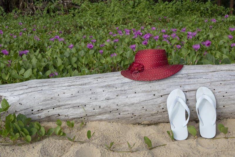 Rode strohoed met witte sandals op zandstrand en van de strandochtend glorieachtergrond royalty-vrije stock foto