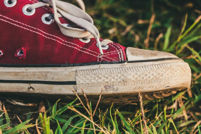 Rode tennisschoenen op gras royalty-vrije stock foto's