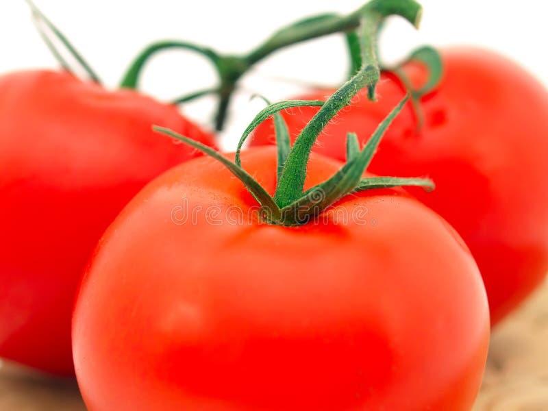 Rode tomaat. stock foto