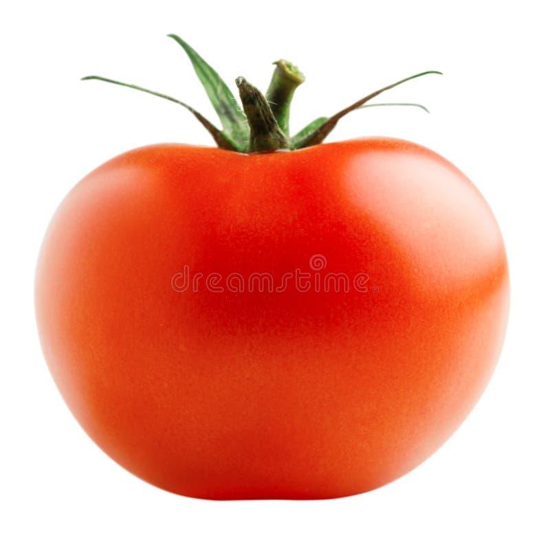 Rode tomaat royalty-vrije stock afbeelding