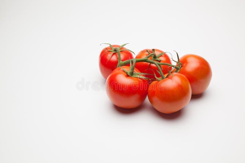 Rode tomaat, met dalingen van water dat versheid en gezondheid aanduidt stock foto's