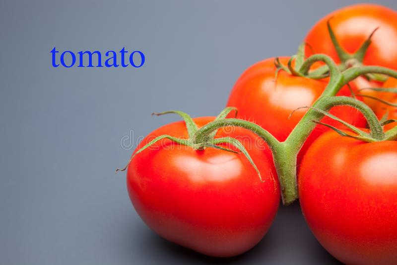 Rode tomaat, met dalingen van water dat versheid en gezondheid aanduidt royalty-vrije stock foto's