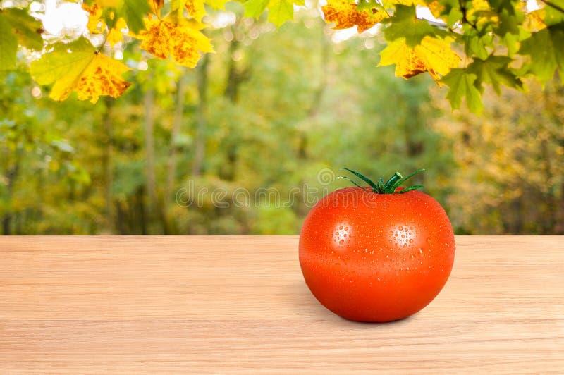 Rode tomaat op een houten lijst stock afbeelding