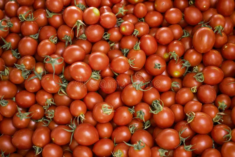 Rode tomaten bij een landbouwersmarkt Gezond voedsel Organische veganistachtergrond stock fotografie