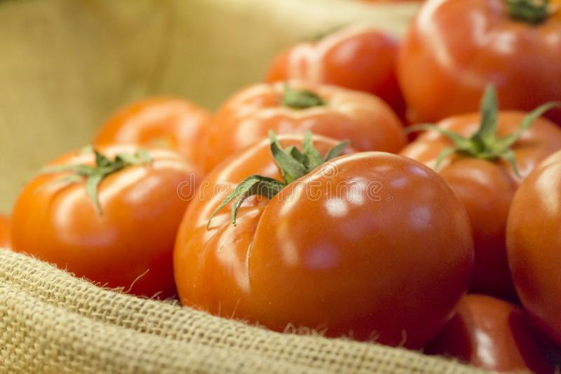 Rode Tomaten over mand royalty-vrije stock afbeeldingen