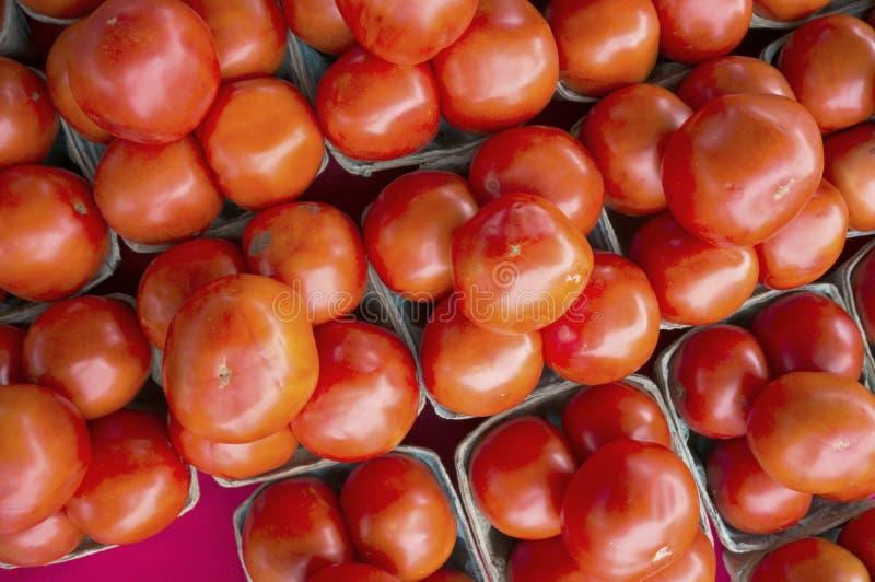 Rode tomaten voor verkoop bij een lokale landbouwersmarkt royalty-vrije stock afbeelding