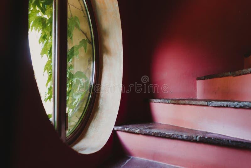 Rode treden in een huis venster met installaties door de treden Huis, binnen en decoratieconcept royalty-vrije stock fotografie