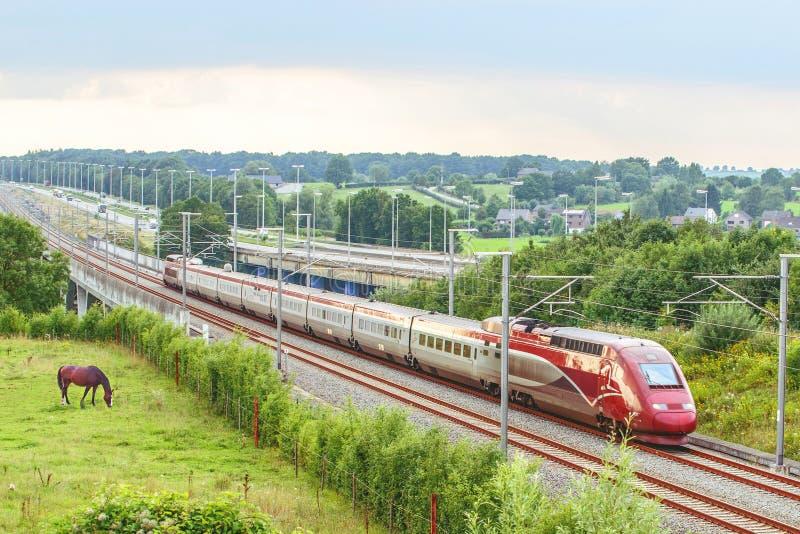 Rode trein stock foto