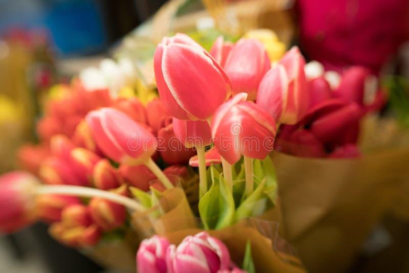 Rode Tulpen voor verkoop royalty-vrije stock foto's