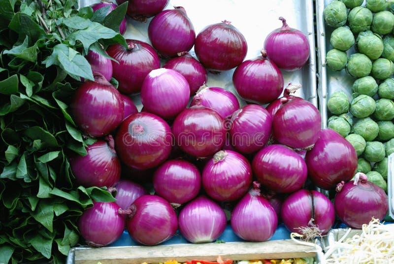 Rode uien in de open markt in Mexico-City stock foto