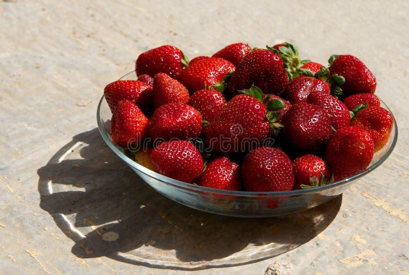 Rode verse aardbeien op een plaat op zonnige de zomerdag. Aardbeien. Verse rode bes met de schaduw. Seizoengebonden vruchten royalty-vrije stock afbeeldingen