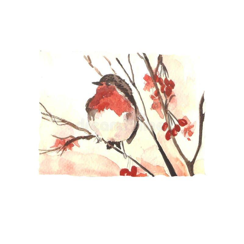 Rode vogel op een kaart van de takwaterverf Nieuwjaar ` s en Kerstmis stock illustratie