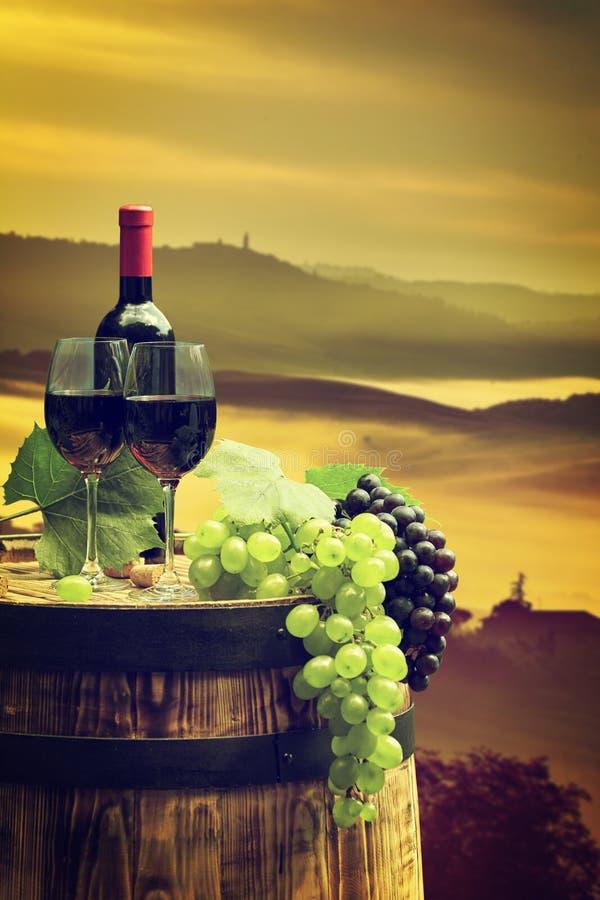 Rode wijn met vat op wijngaard in groen Toscanië stock afbeeldingen