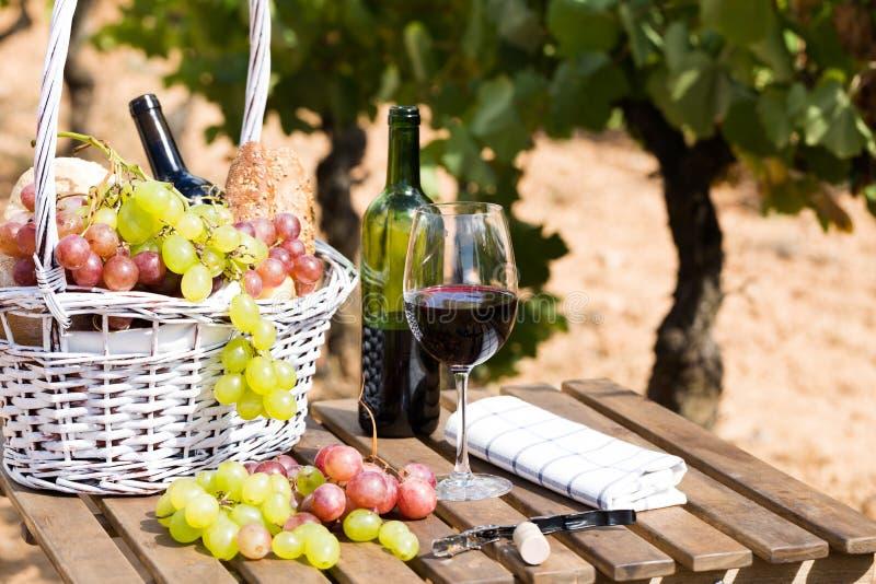 Rode wijn rijpe druiven en picknickmand op lijst in wijngaard stock afbeeldingen