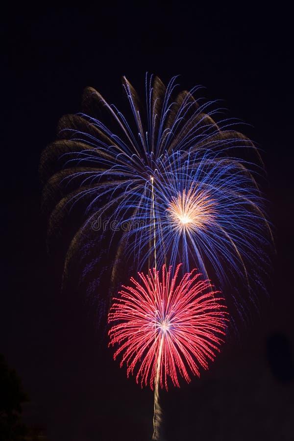 Rode, witte en blauwe vuurwerkverticaal stock afbeeldingen