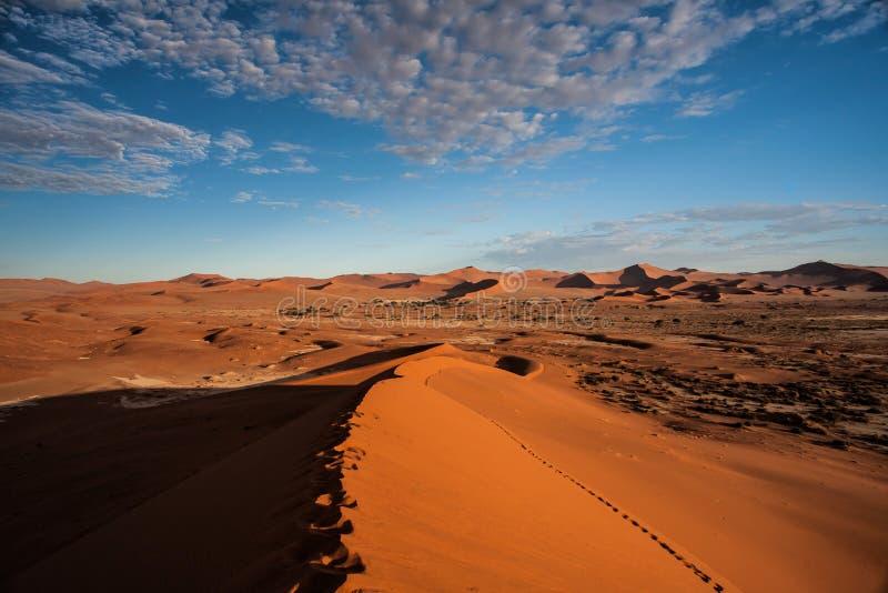 Rode zandduinen van Sossusvlei in Namibië royalty-vrije stock afbeelding