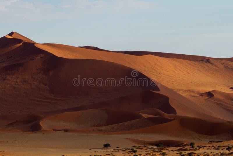 Rode zandduinen van Sossusvlei in Namibië royalty-vrije stock foto's