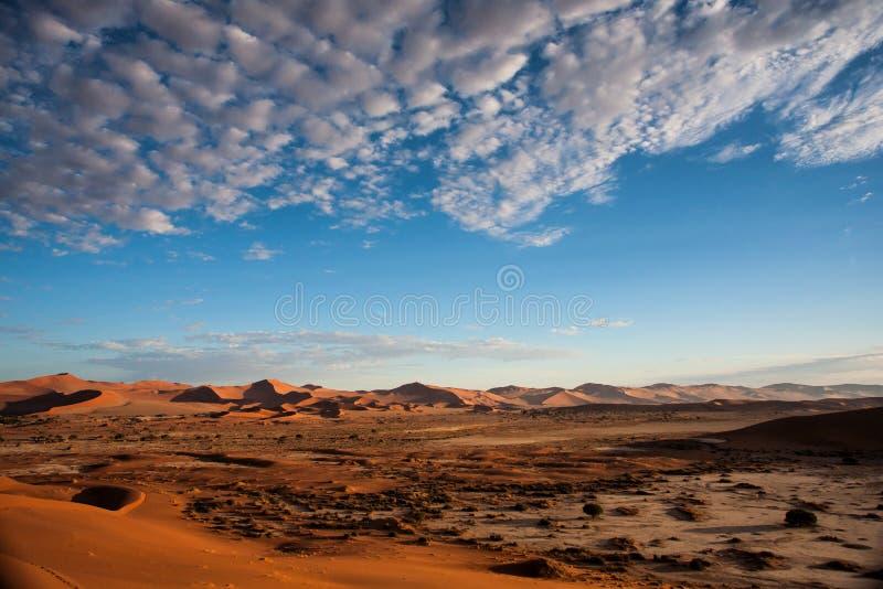 Rode zandduinen van Sossusvlei in Namibië stock foto