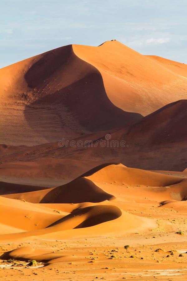 Rode zandduinen van Sossusvlei in Namibië stock foto's